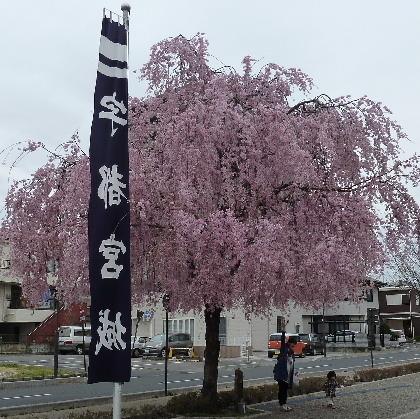 utunomiya3.JPG